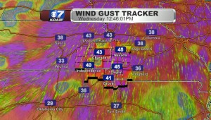 Wed Gusts